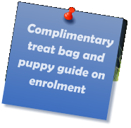 Complimentary  treat bag and puppy guide on enrolment